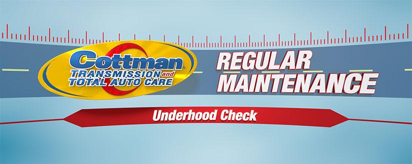 car underhood check up - car inspection tips video